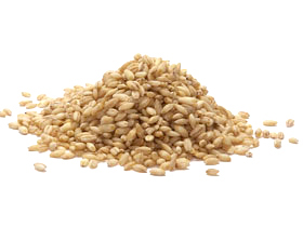 Barley hulled 006155 lg
